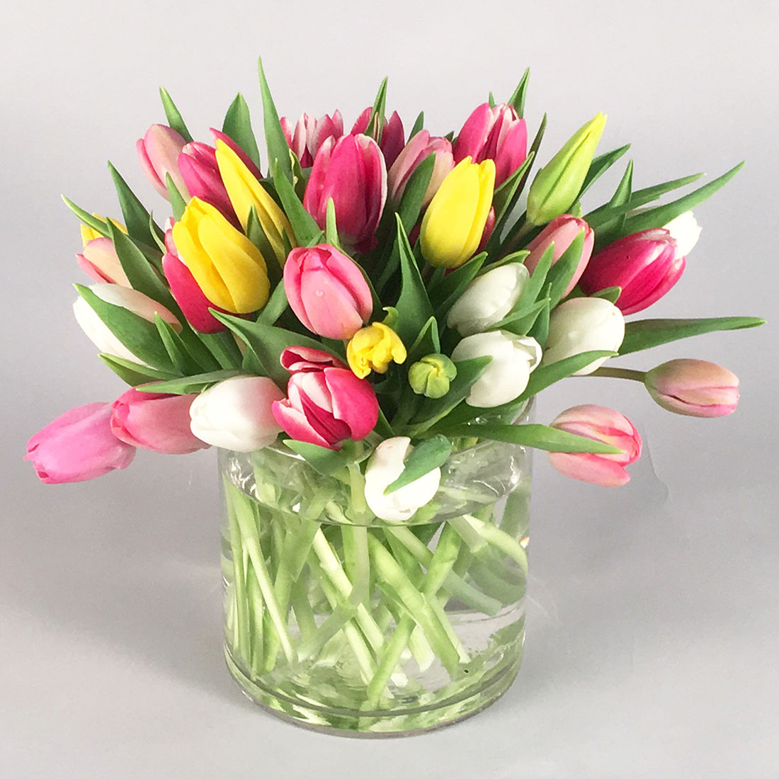 Scentsational Blooms